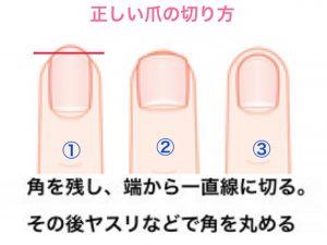 爪の切り方2