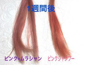 ピンク&ムラサキシャンプー 比較