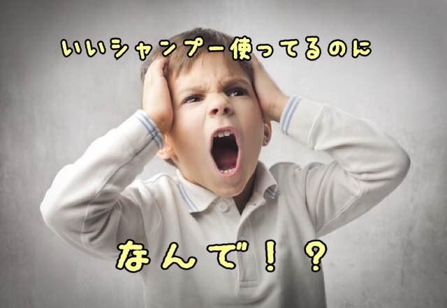【必見】アミノ酸シャンプーで抜け毛が増える!?その原因と本当におすすめのシャンプー教えます!