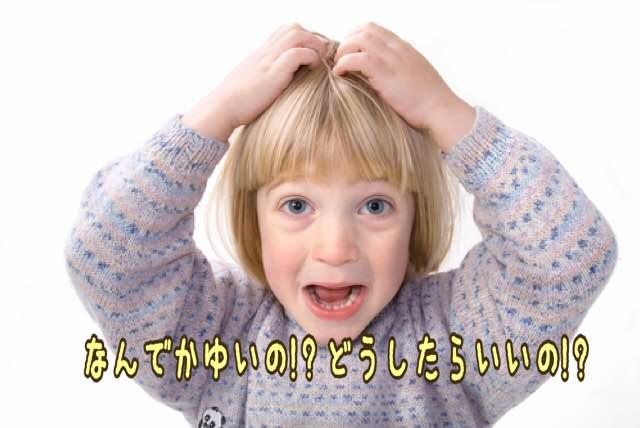 """アミノ酸シャンプーで頭皮の""""かゆみ""""が起こる原因は?~敏感肌さんは注意しよう~"""
