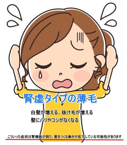腎機能 薄毛