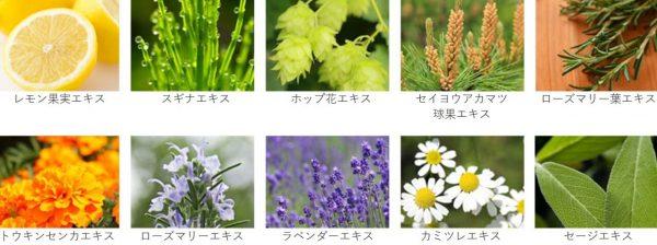 ルメント 植物エキス