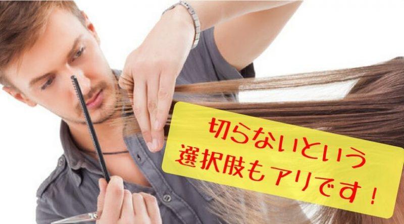 髪の毛 カット