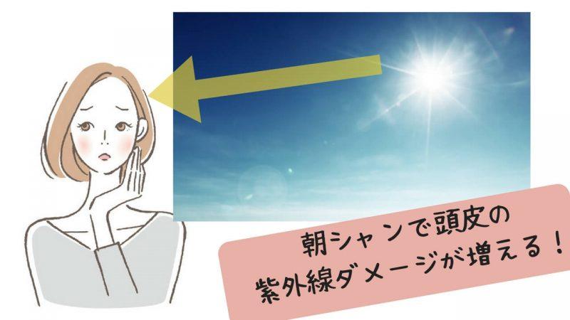 フケ 朝シャン 紫外線ダメージ